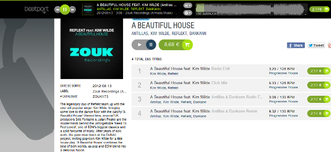 A-beautiful-house2